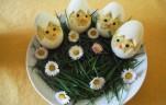 csibék tojásban kép