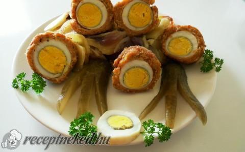 Rakott skót tojás