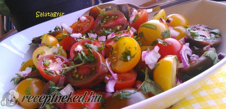Zöldfűszeres-paradicsomsaláta-1