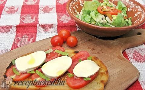 Insalata caprese  / panzanella