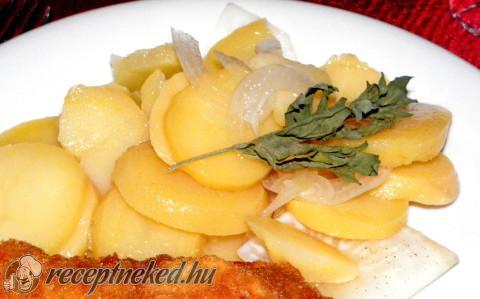 Zelleres krumplisaláta