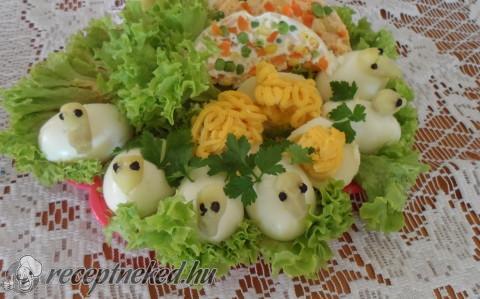 Töltött tojáskacsa