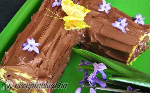 Csokoládés fatörzs